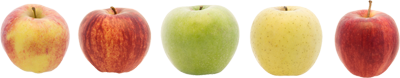 Apples5460498